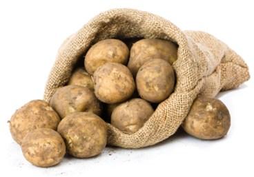 10 lbs potatoes